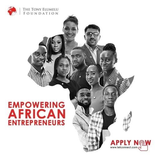 2020 Tony Elumelu Foundation (TEF) Entrepreneurship Programme For Africans