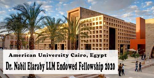 Dr. Nabil Elaraby LLM Endowed Fellowship at American University in Cairo, Egypt