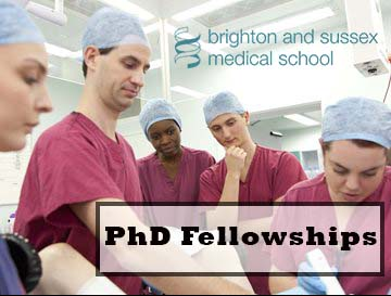 PhD Fellowships at Brighten and Sussex Medical School
