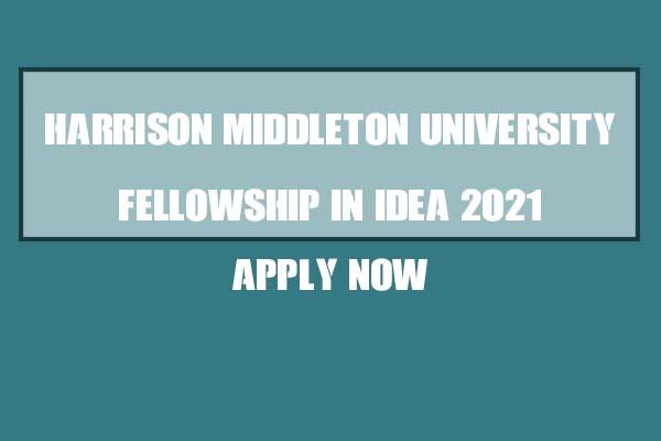 The Harrison Middleton University Fellowship In Ideas 2021