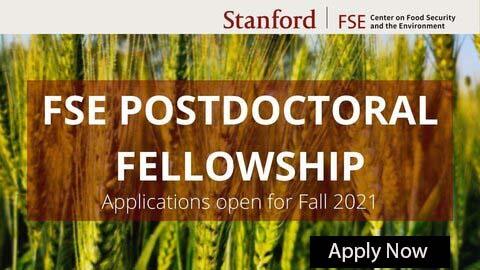 FSE 2021 Postdoctoral Fellowship Programme