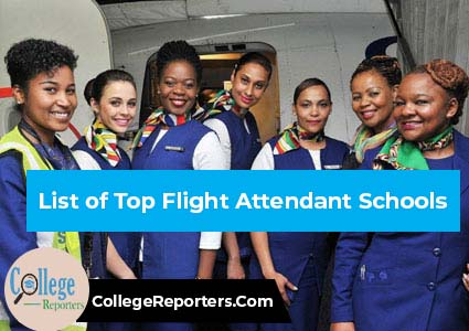 Top Flight Attendant Schools in Nigeria
