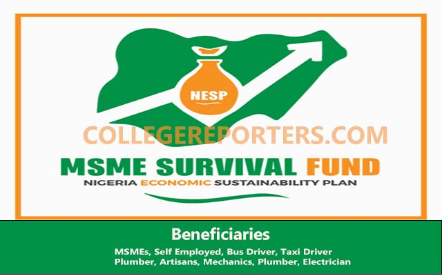 FG MSME Survival Fund